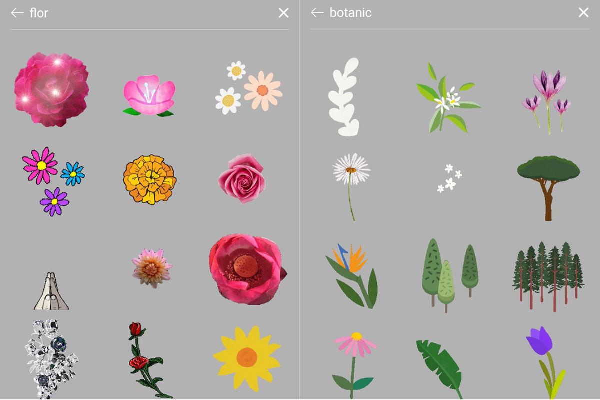 Collage de Flor y Botanic