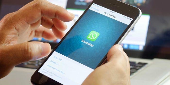 Cómo contactar con el soporte de WhatsApp facilmente