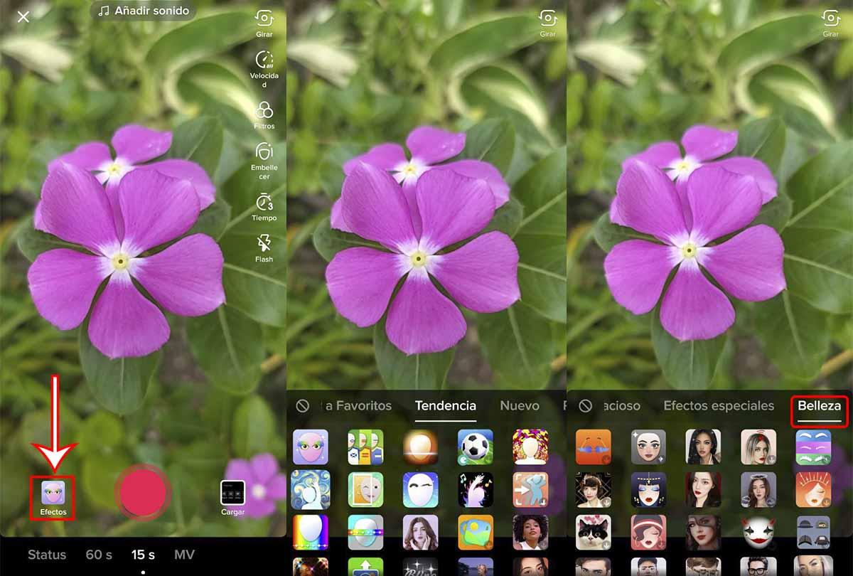 Cómo encontrar filtros belleza TikTok