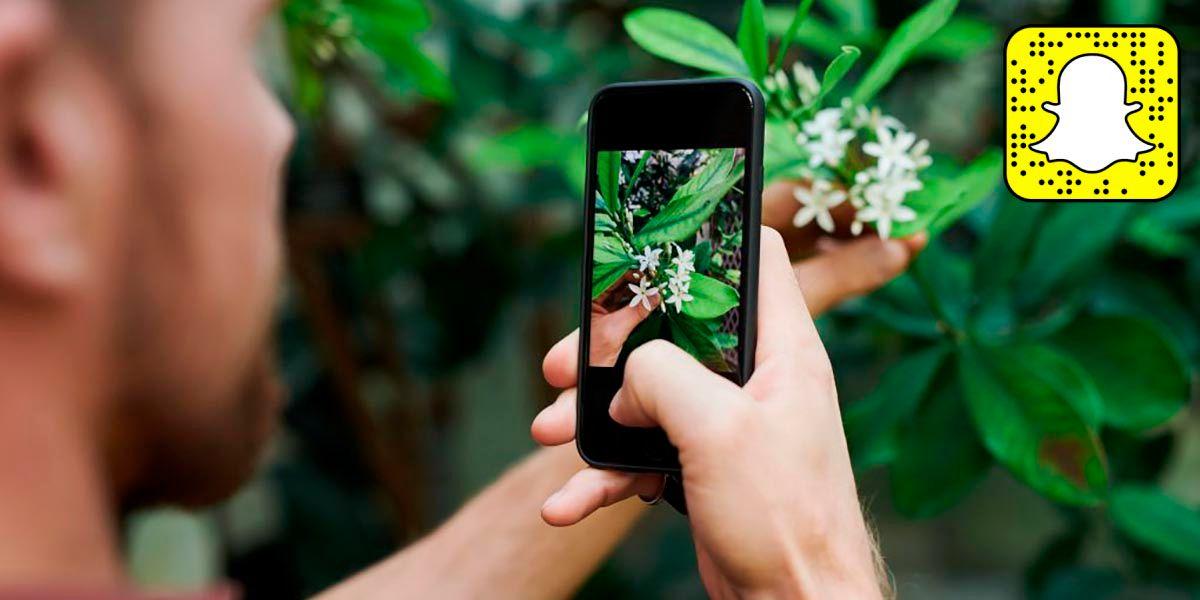 Como reconocer cualquier planta con un filto de Snapchat