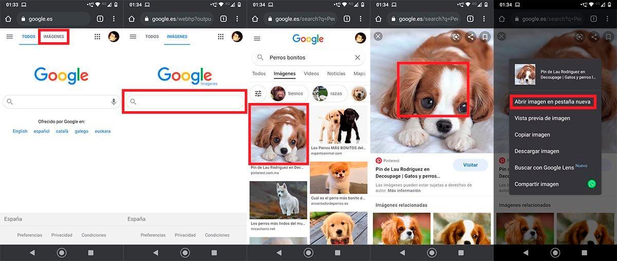 Copiar enlace de una imagen Google