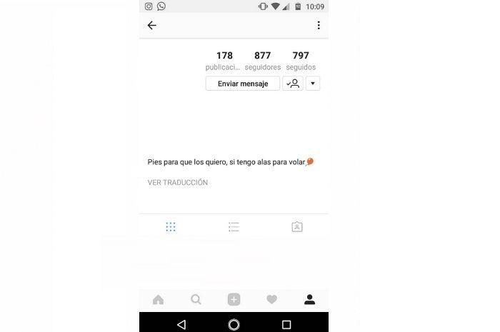 Descripción del perfil en Instagram