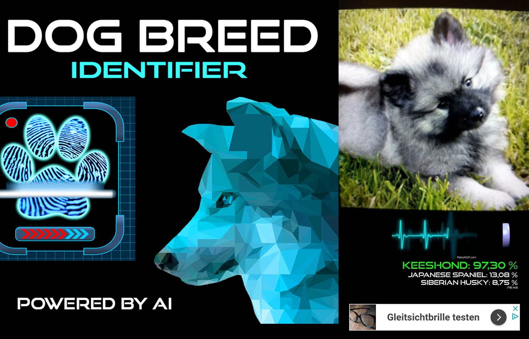 El escáner Dog Breed Identifier necesita conexión a Internet para acceder a su base de datos y rrojar resultados precisos