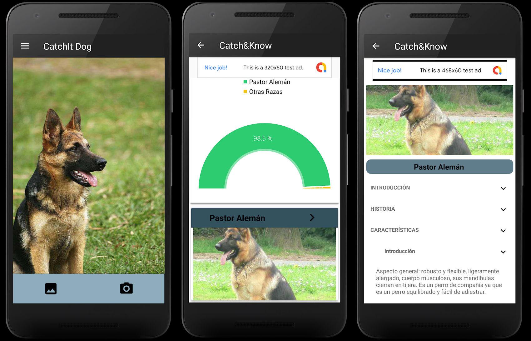 El identificador de razas de perros CatchIt es uno de los más completos y precisos