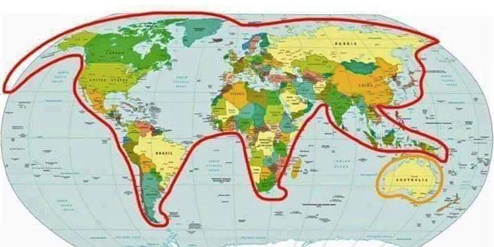 El mundo es un gato que juega con Australia