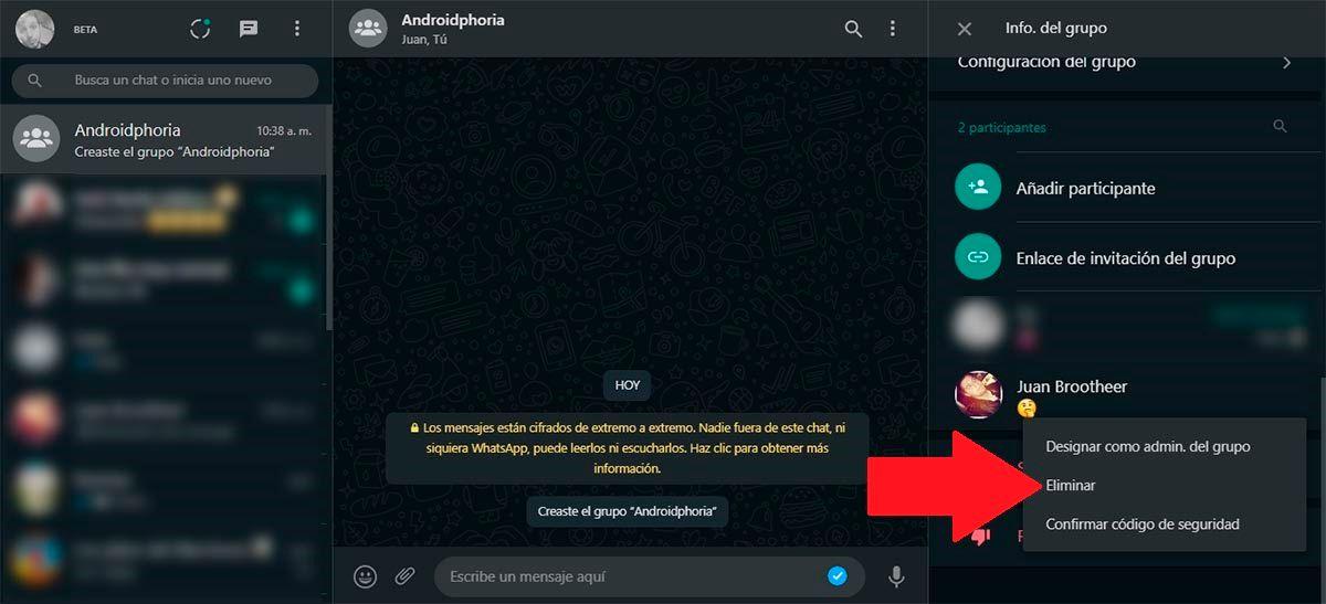 Eliminar contacto del grupo WhatsApp Web