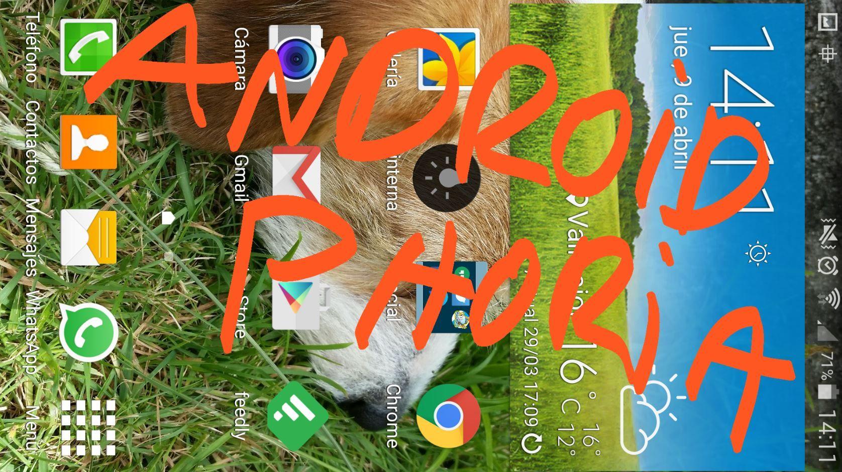 Escribir en pantalla AndroidPhoria