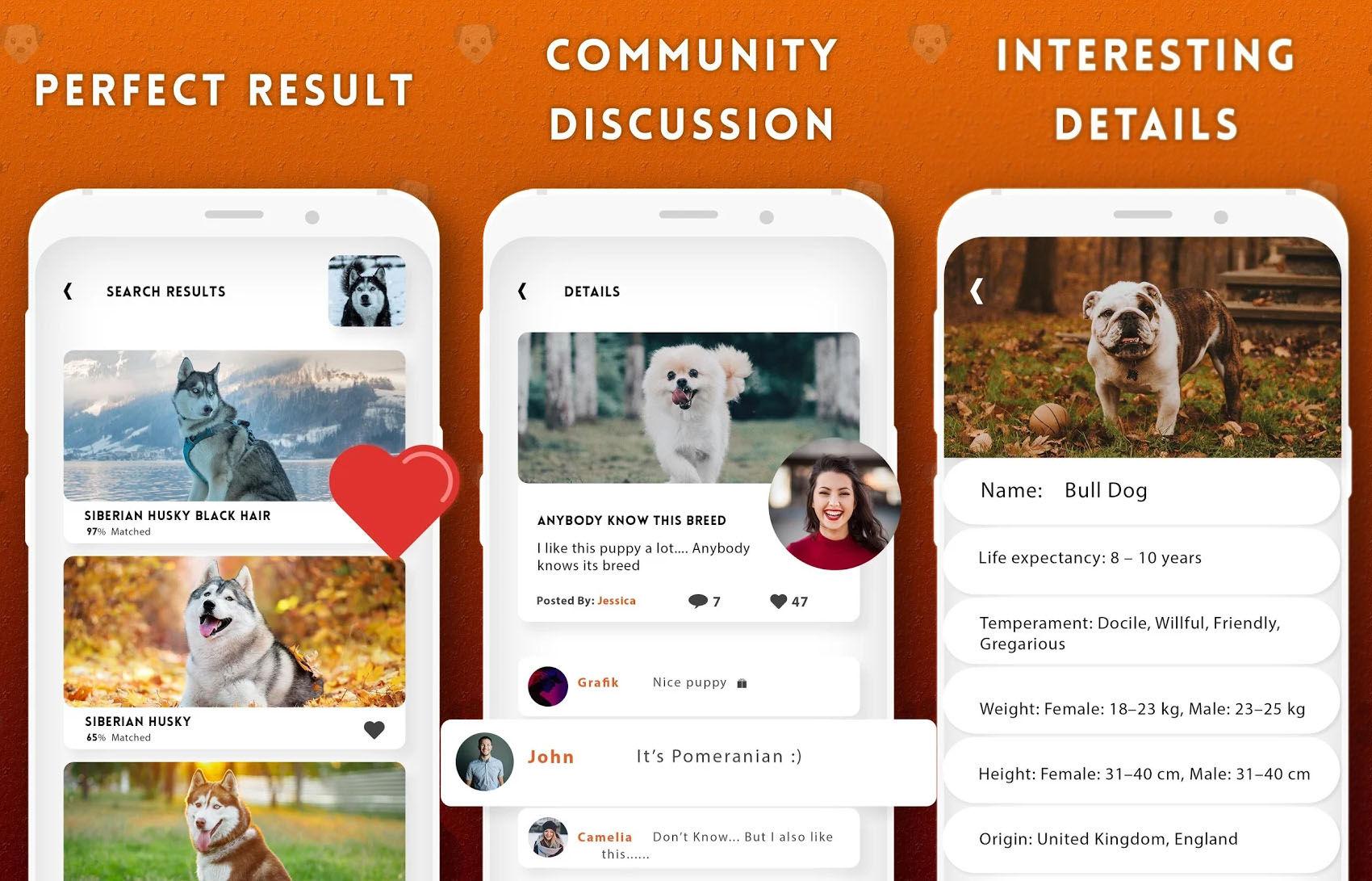 Esta app para identificar razas caninas incorpora un foro de discusión comunitario para hablar sobre perros