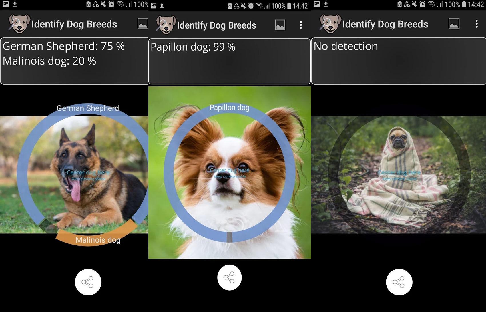Este scaner identificador de razas caninas necesita 1 GB de espacio libre en el móvil para poder funcionar