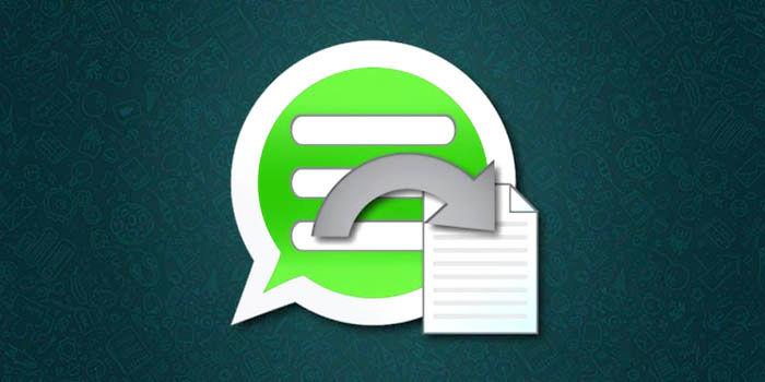 Exportar conversación en WhatsApp