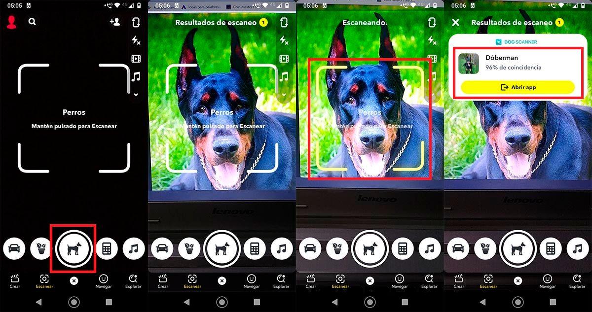 Filtro para saber la raza de un perro Snapchat