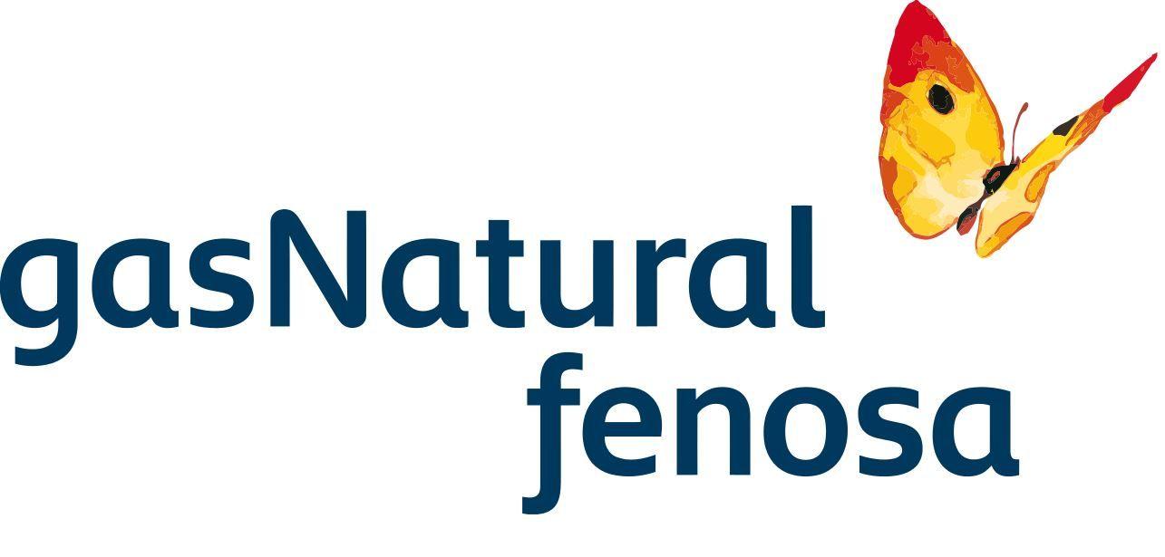 Gas Natural Fenosa Leer contador
