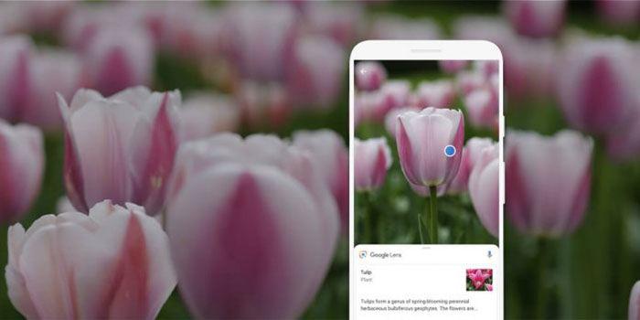Google Lens cosas que se pueden hacer