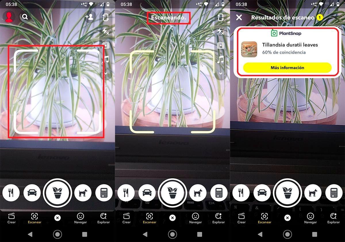 Identificar plantas con Snapchat