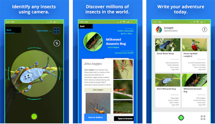 Insect Identifier para Android