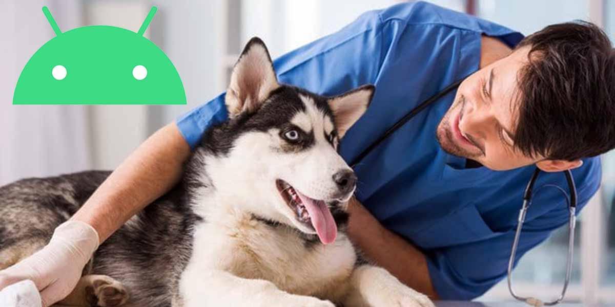 Las 7 mejores apps para veterinarios