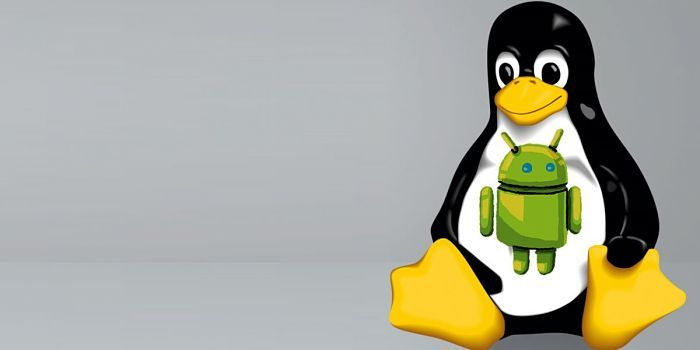 Linux en Android