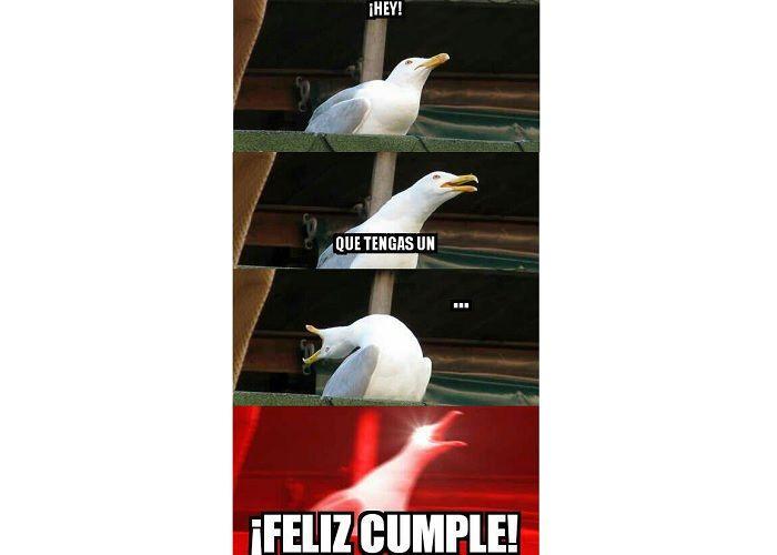 Meme de cumpleaños de la paloma