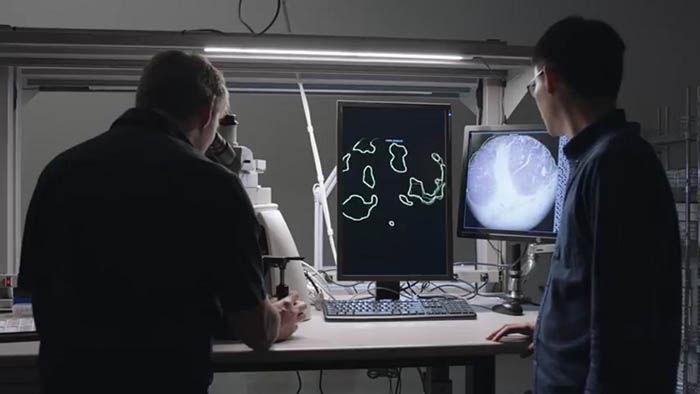 Microscopio de realidad aumentada de Google