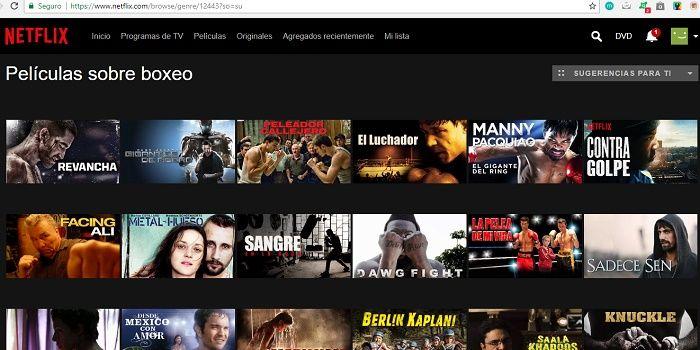 Netflix entregas boxeo