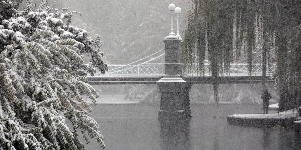 Parque con puente y nieve
