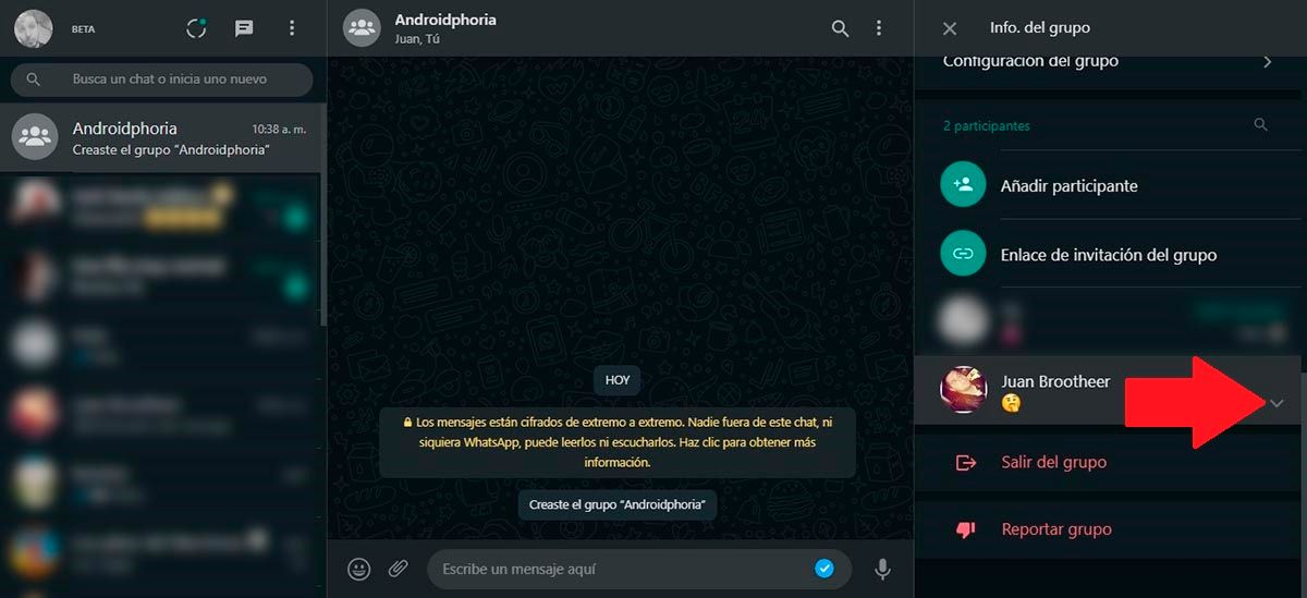 Opciones del grupo WhatsApp Web