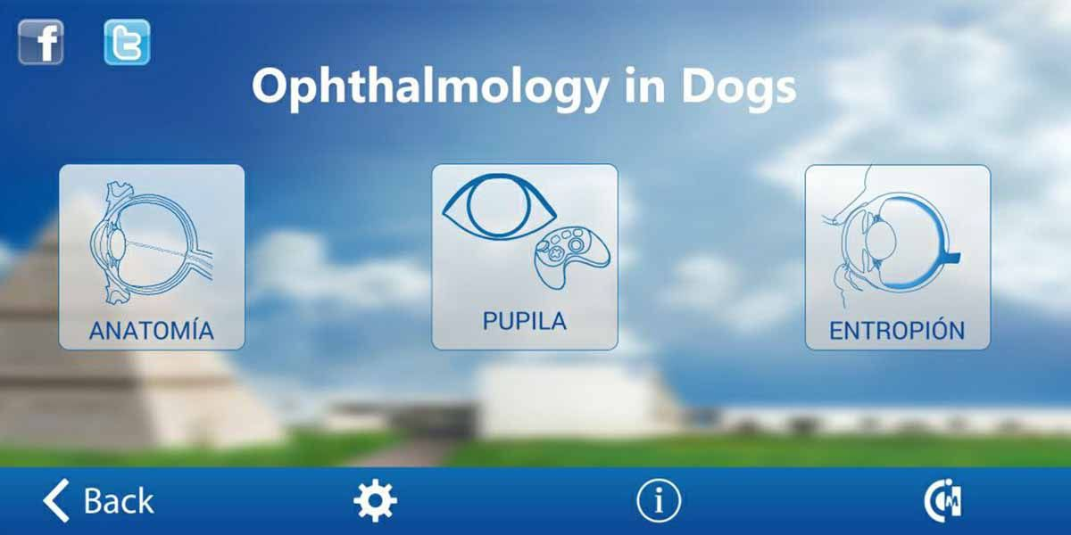 Ophthalmology in Dogs