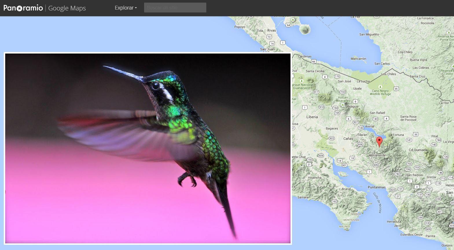 Panoramio se integrará en Google Maps