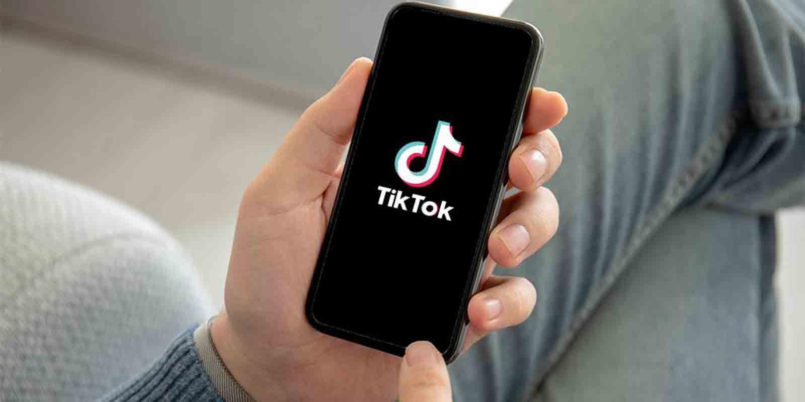 Seguidores reales influencer TikTok