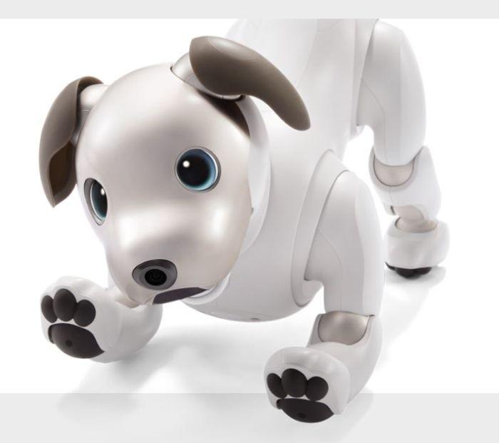 Sony Aibo perro robot
