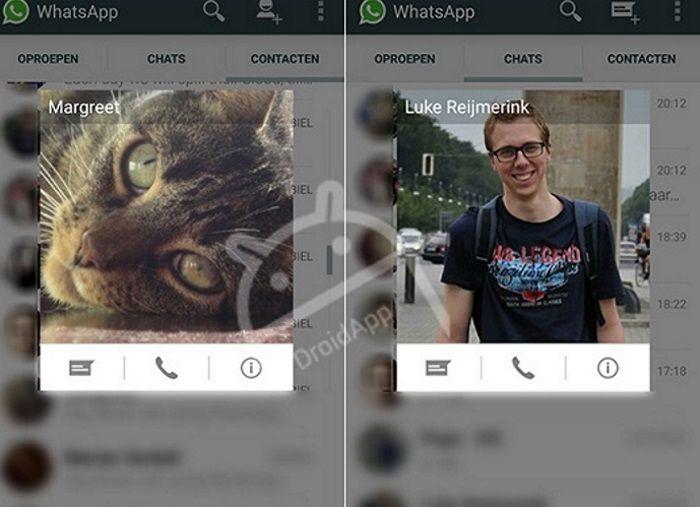 WhatsApp-Beta