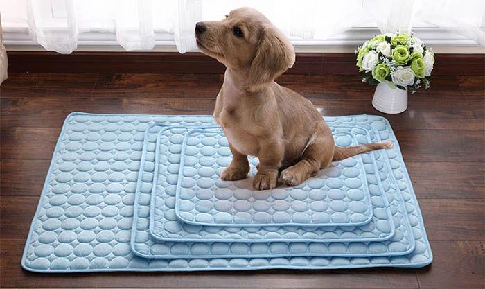 almohadillas refrigerantes para perros