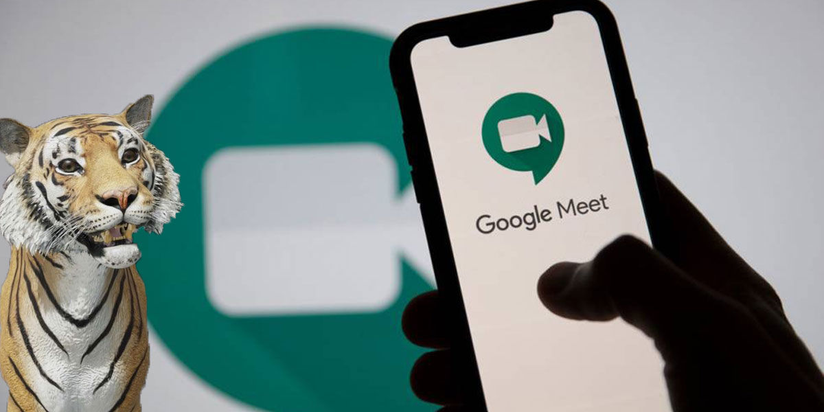 Poner cara animales en Google Meet