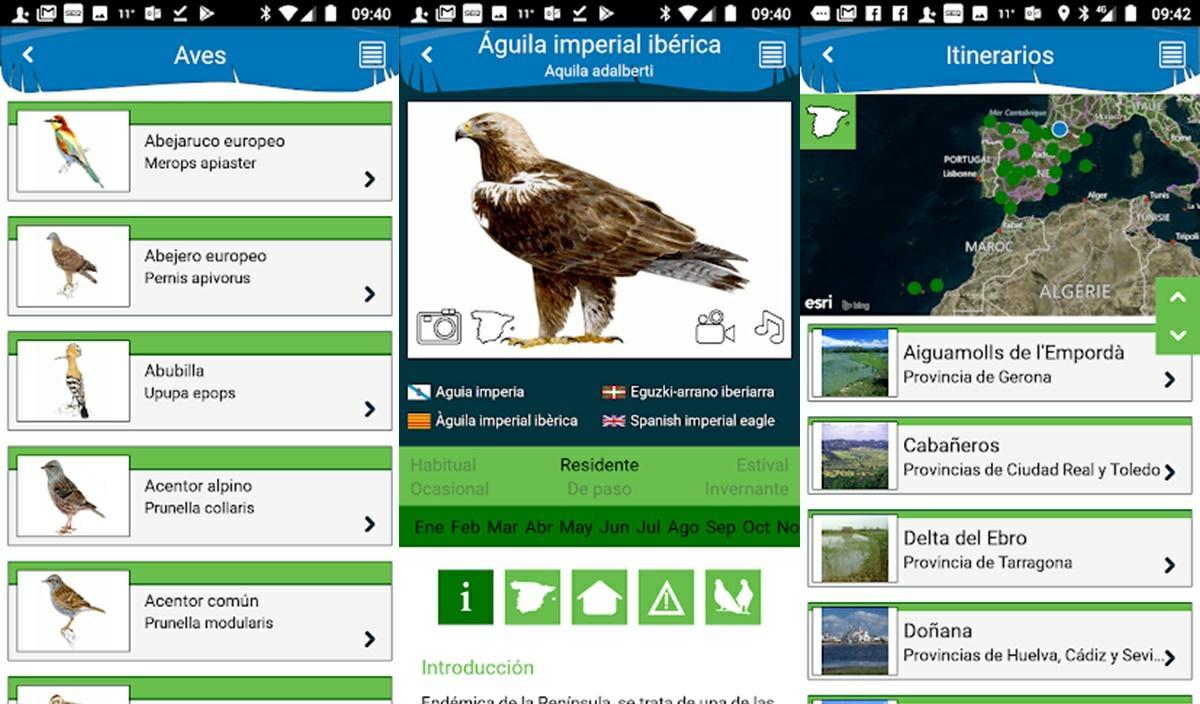 aves de espana app