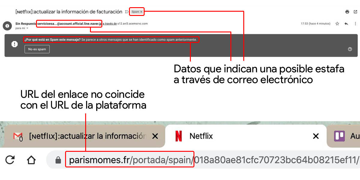 correo y URL falsos netflix estafa