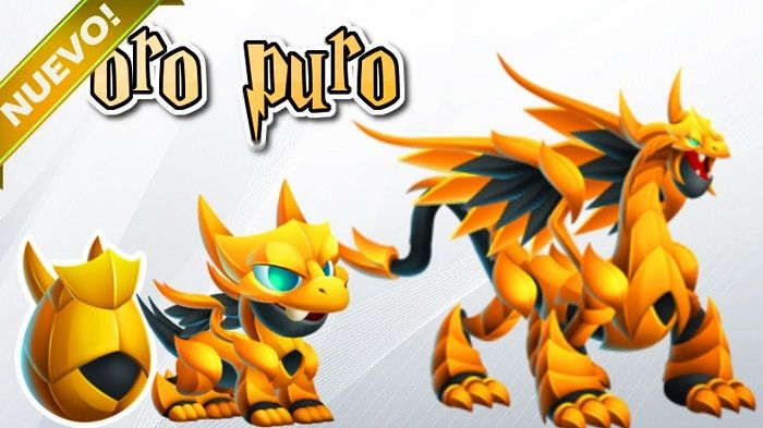 dragon city oro