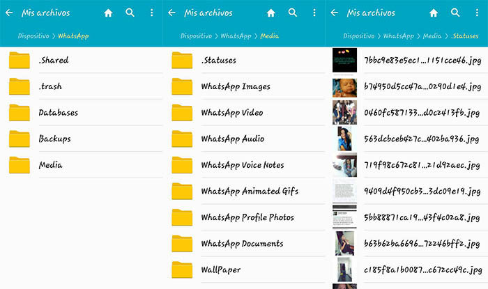 encontrar carpeta de statuses de WhatsApp