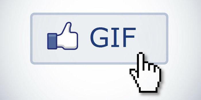 encuestas gif facebook
