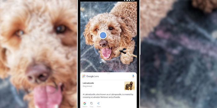 google lens camara inteligencia artificial
