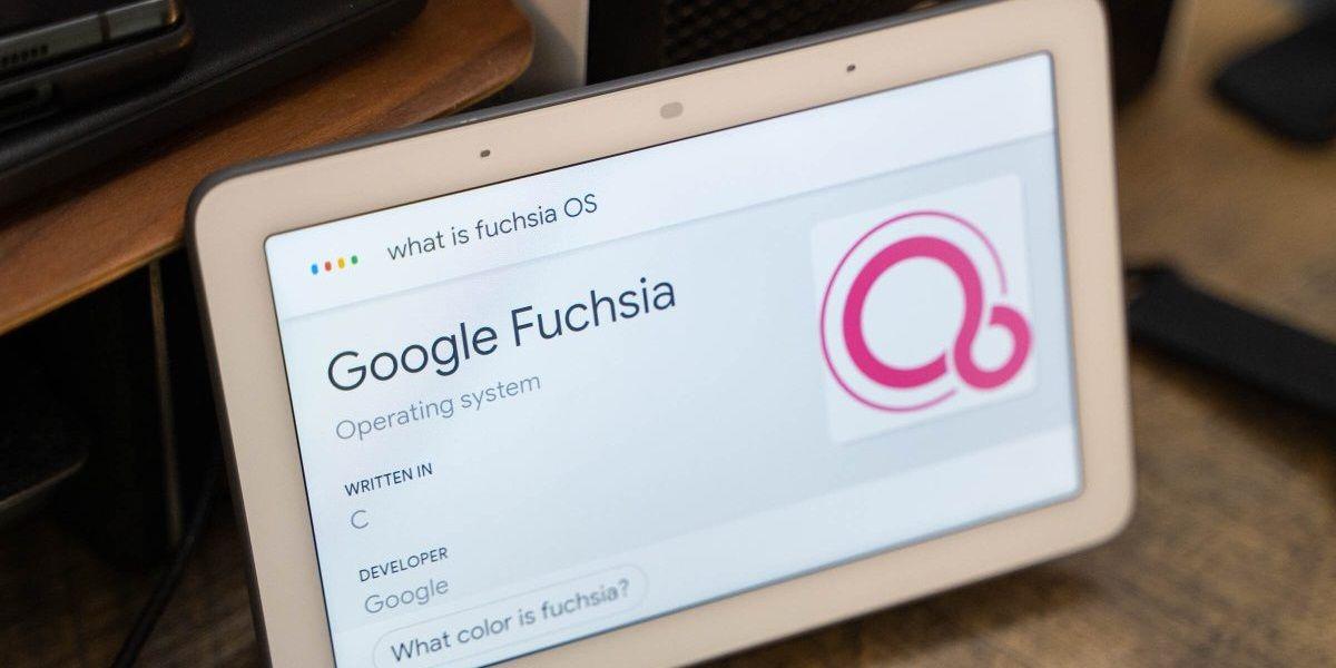 google nest fuchsia