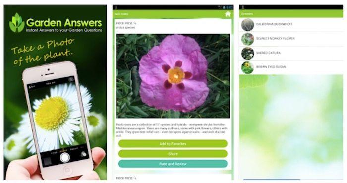 identificar plantas app