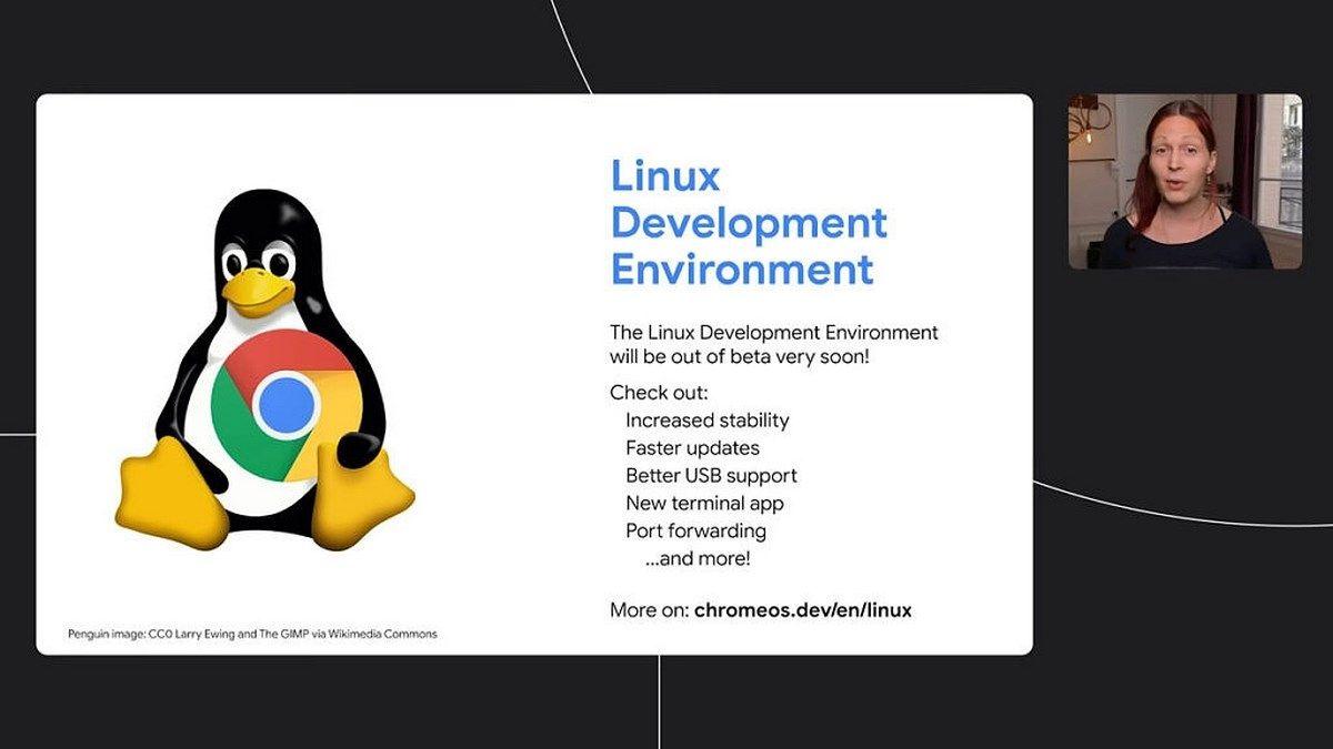linux chromebook