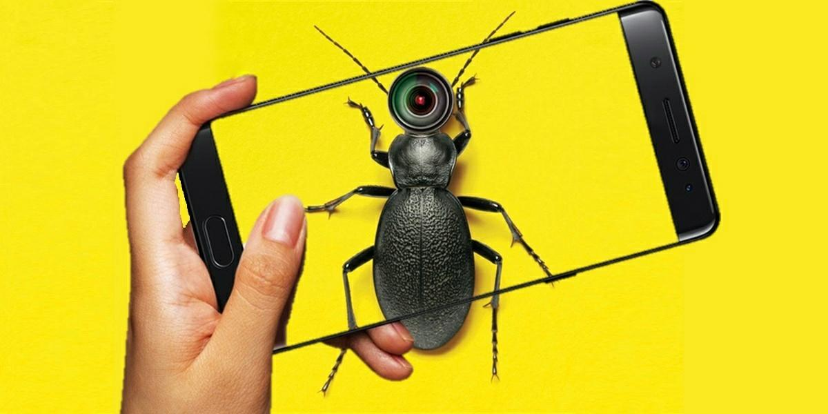 mejores apps identificar insectos
