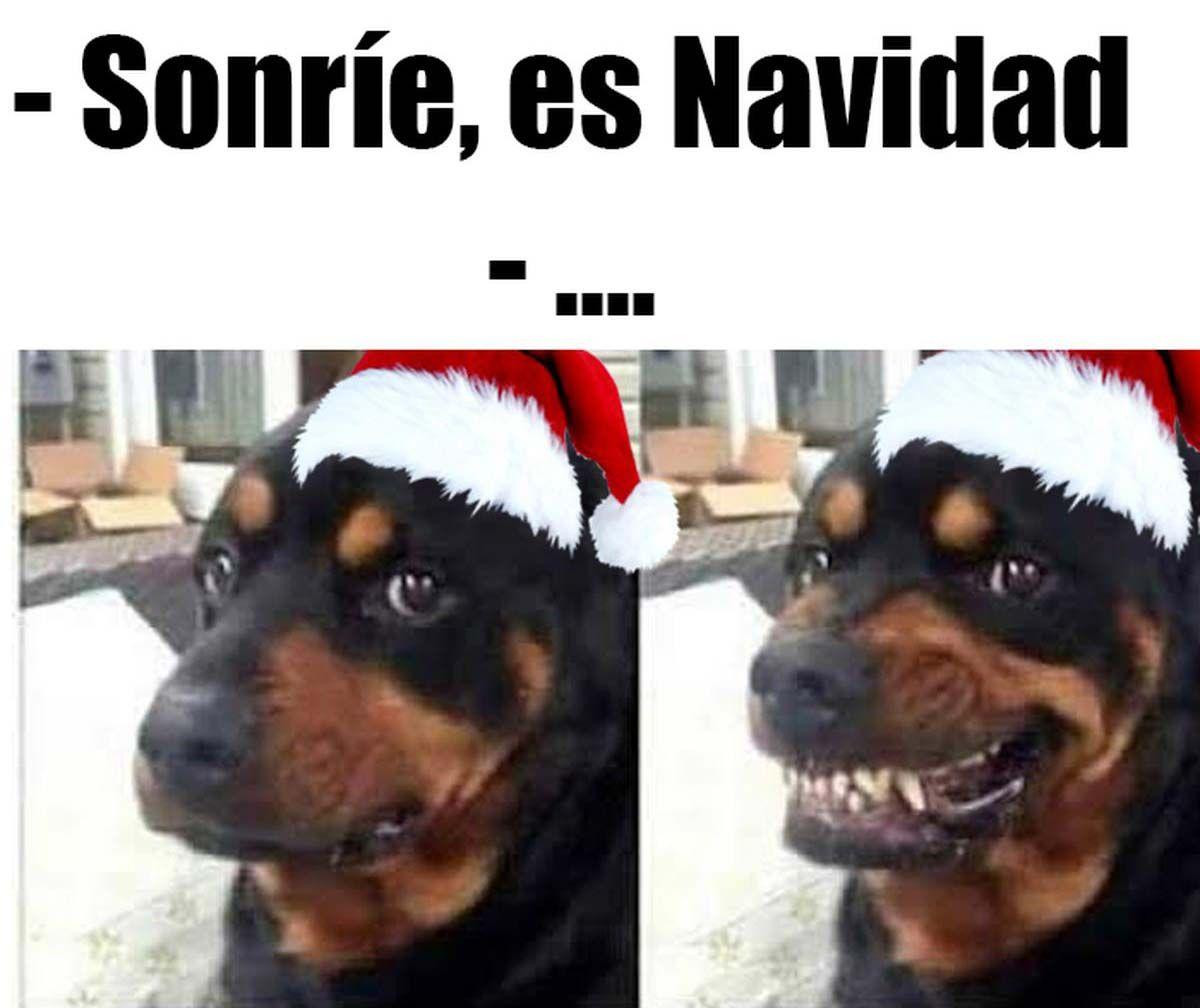 meme navidad nochebuena