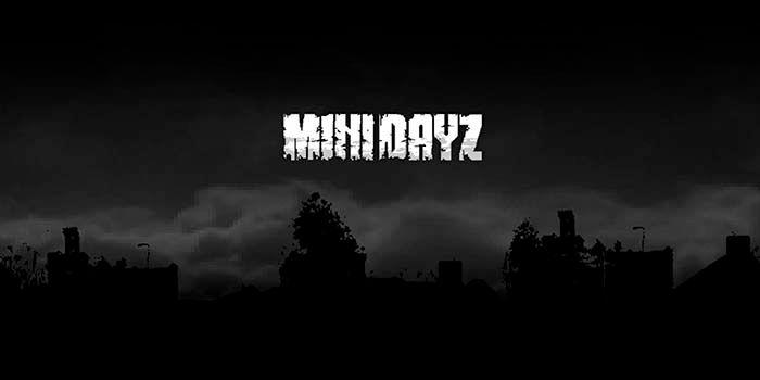 minidayz