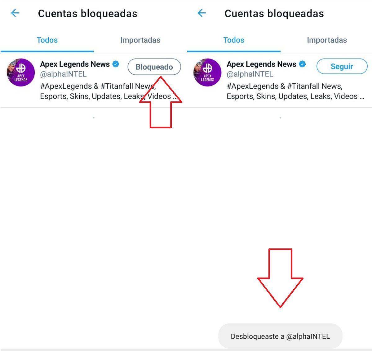 pasos desbloquear usuario twitter (2)