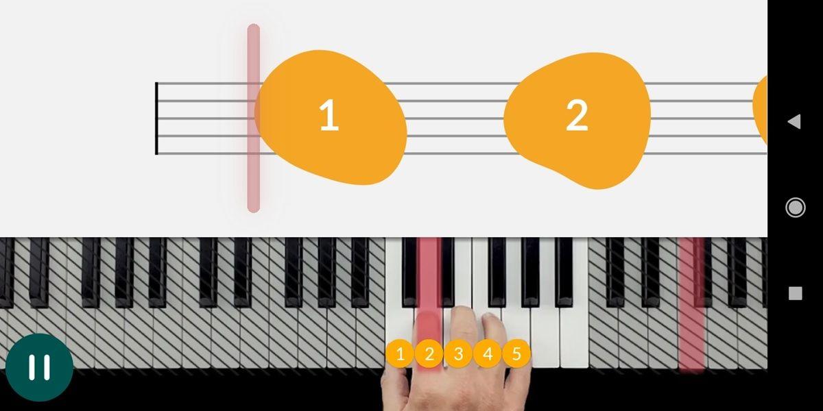 skoove tutorial basico