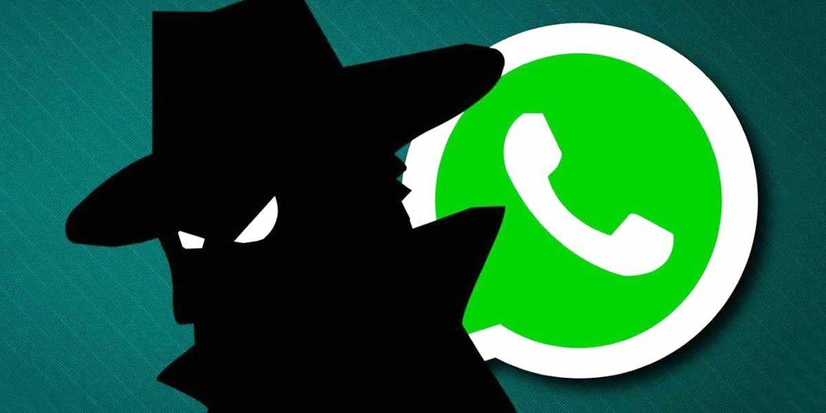timo whatsapp 6 digitos