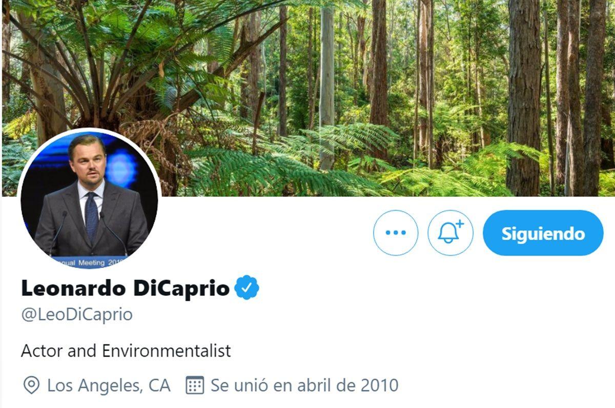 verificacion twitter de cuenta de actor